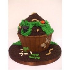 Bug Theme cake